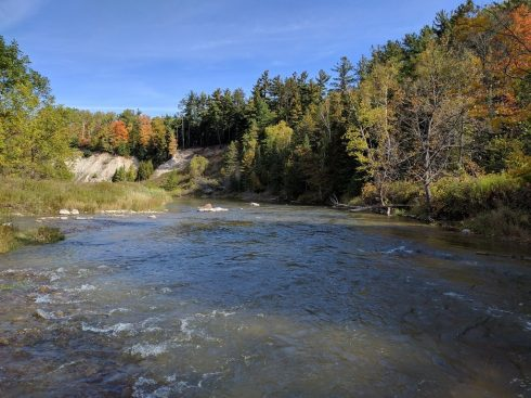 An Ontario Steelhead river