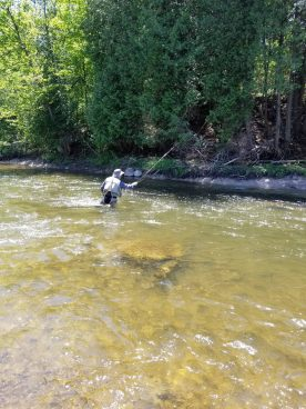 Fishing on 16 mile creek in Oakville