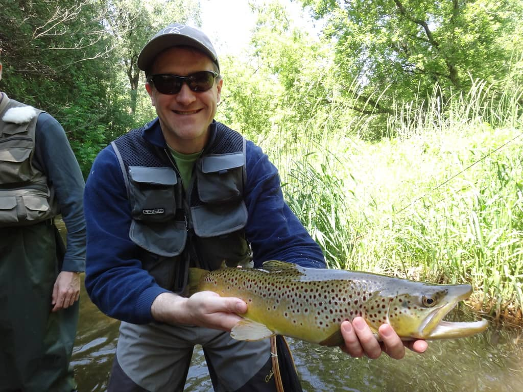 Ontario Brown trout fishing