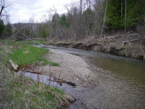 FIshing On Duffins Creek