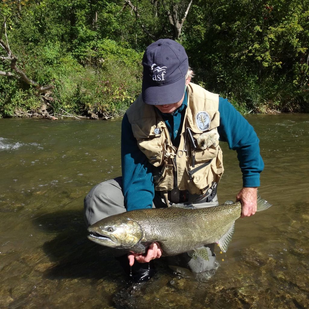 FISHING FOR ONTARIO SALMON