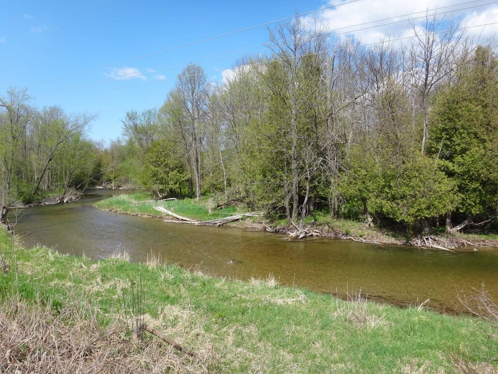 Fishing For Ontario trout and steelhead