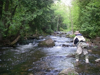 Fishing for Brown trout in Ontario