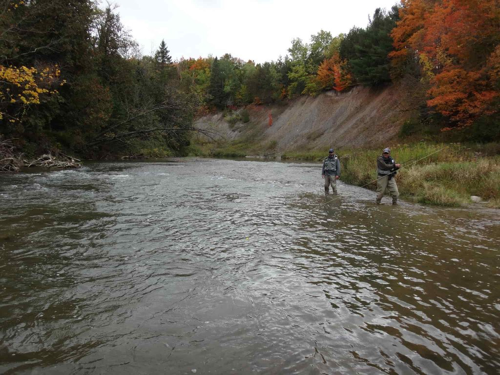 Fishing for salmon in Ontario