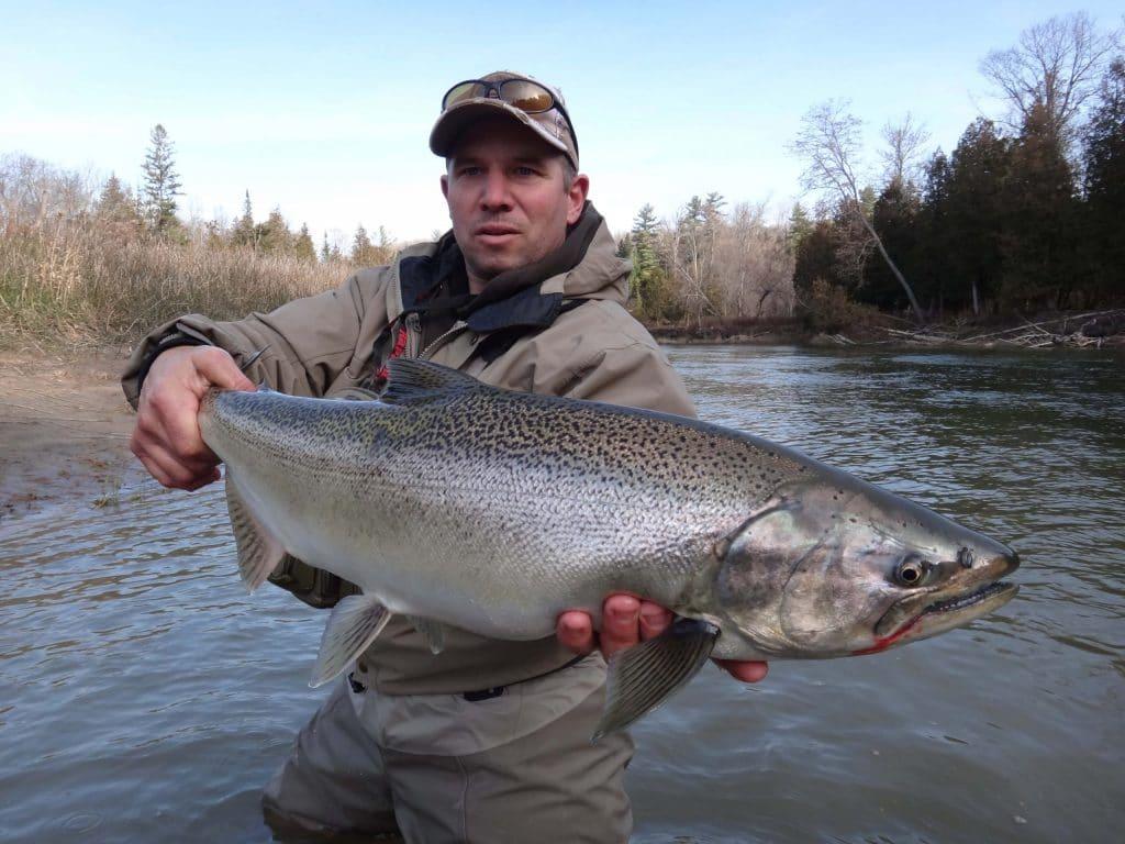 An Ontario Salmon