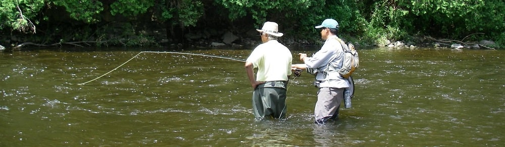 Ontario fly fishing guides guiding a client