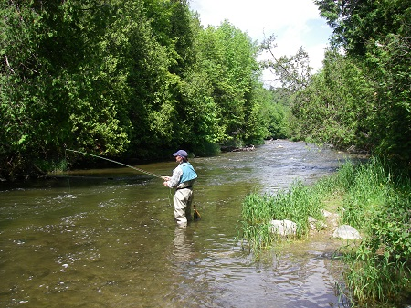 Where Can I Fish On The Credit River? 18 Best Access Spots