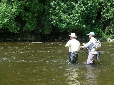 An Angler Fly Fishing In Ontario