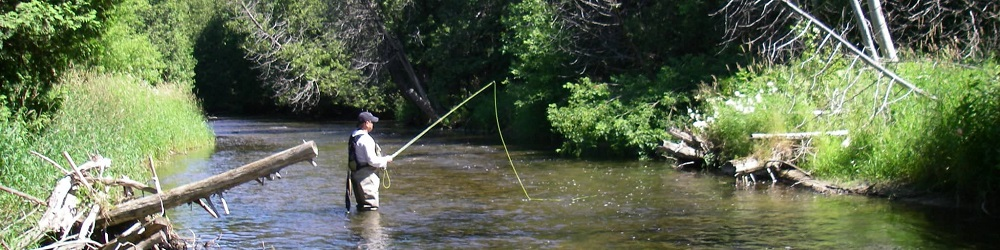 Fly Fishing In Ontario