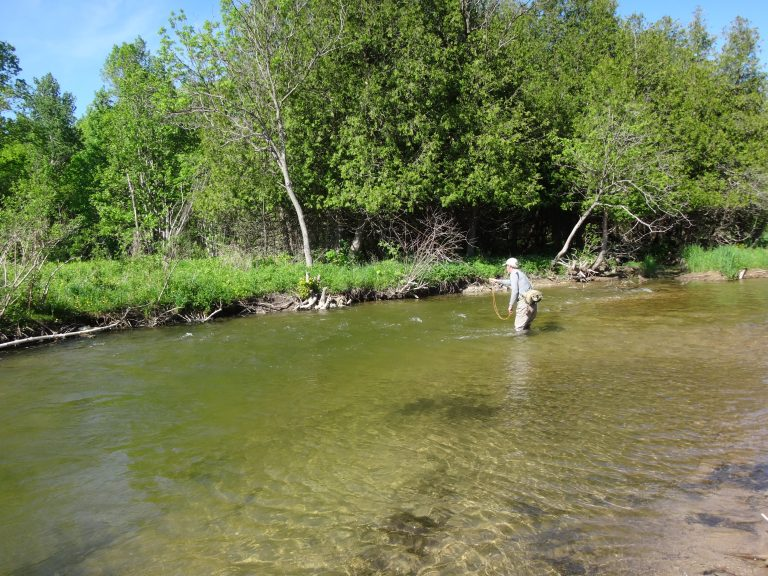 Ontario Fly Fishing: 15 Best Places And Methods To Try