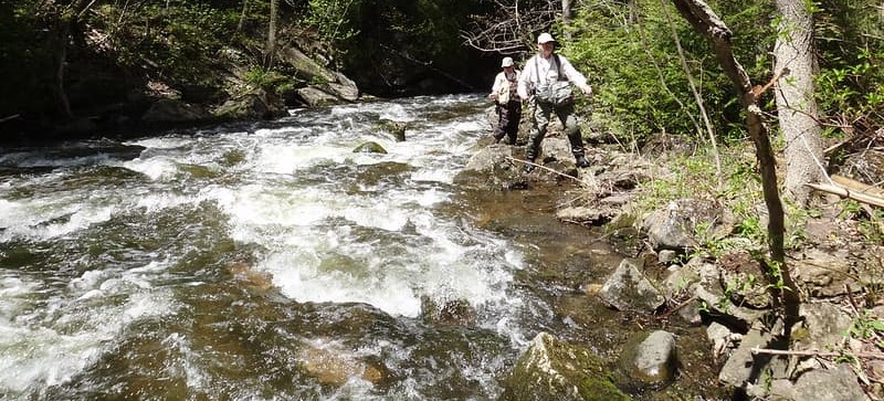 Anglers fishing the faster water of the upper Credit River