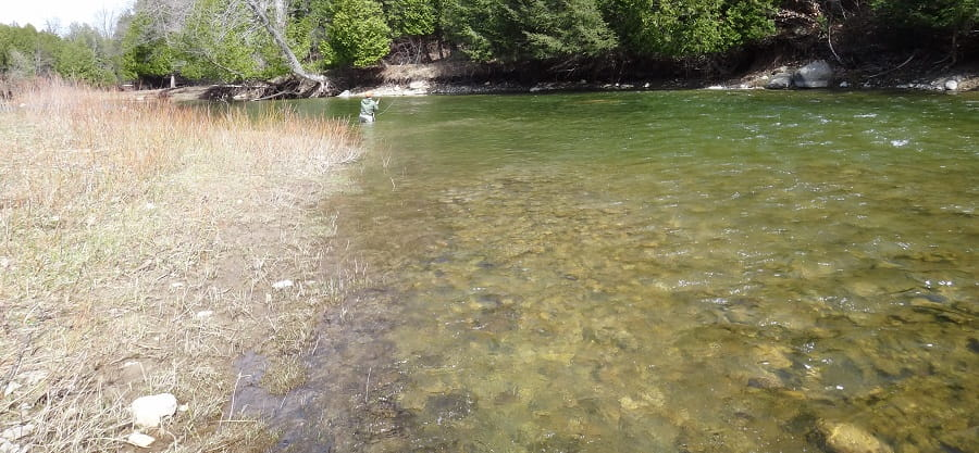 Water levels will tell you when to fish for steelhead in Ontario