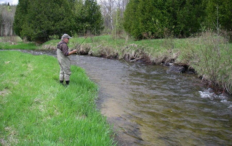 How To Catch Brook Trout In Small Rivers