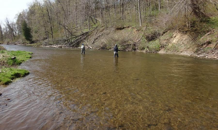 Fishing the middle Credit river for trout