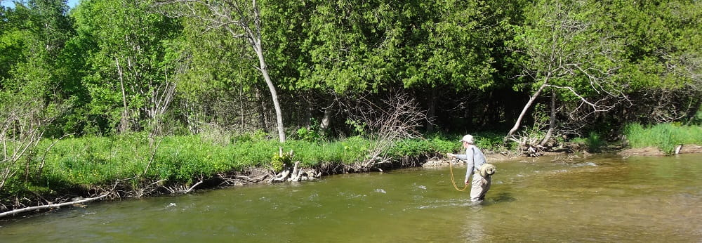 An angler fishing for Ontario brown trout
