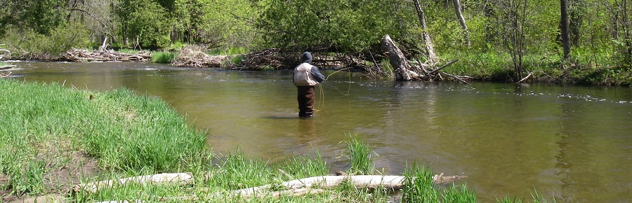 There are many good rivers for fishing near Toronto