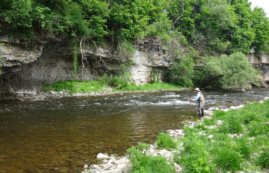 An Angler Fly Fishing on The Grand River