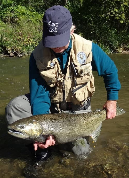 This angler caught a huge salmon in low water