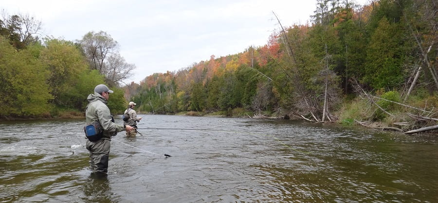 Fly Fish Ontario - Anglers fishing on the Saugeen river