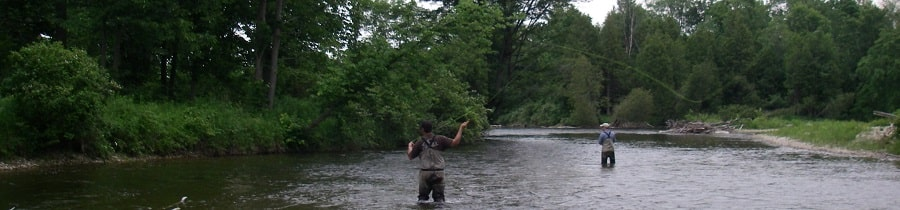 Fly fishing for Ontario rainbow trout