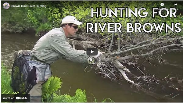 Fishing The Credit River Video