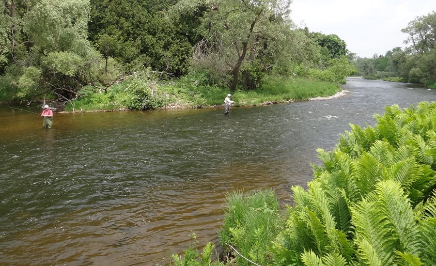 A couple of anglers fishing the brown trout section of the Grand River