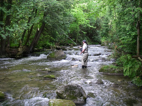 The Best Rivers In Ontario For Trout And Steelhead