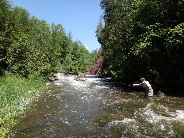 Fishing Near Toronto – 15 Best Places To Fish