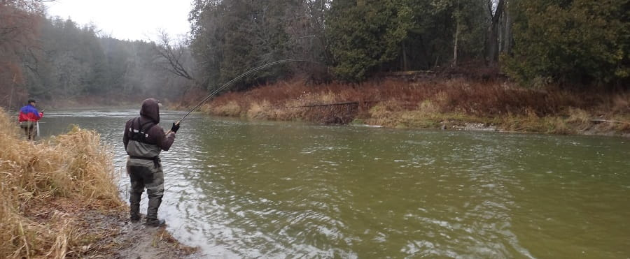 river temperatures will tell you when to fish for steelhead in ontario