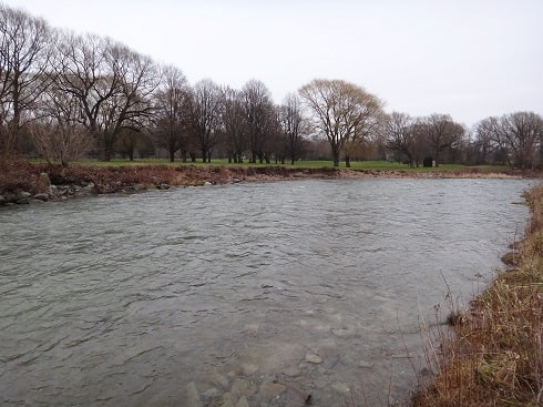 Fishing near Toronto can be done on this part of The Humber River near Eglinton Avenue.