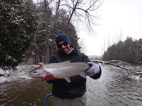 An angler with a winter caught steelhead on an Ontario trout river.