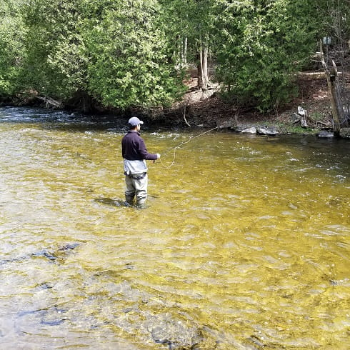 An angler brook trout fishing on one of the best brook trout rivers in Ontario