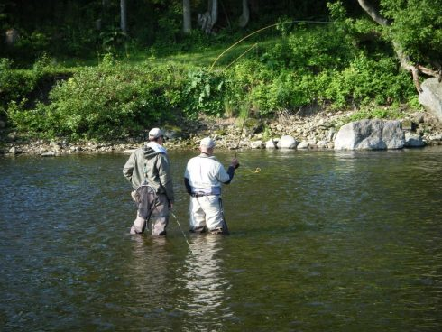 Fly Fishing Gear For Beginners: Everything You Need