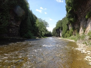 Elora Gorge Fishing – A Guides Advice And Tips