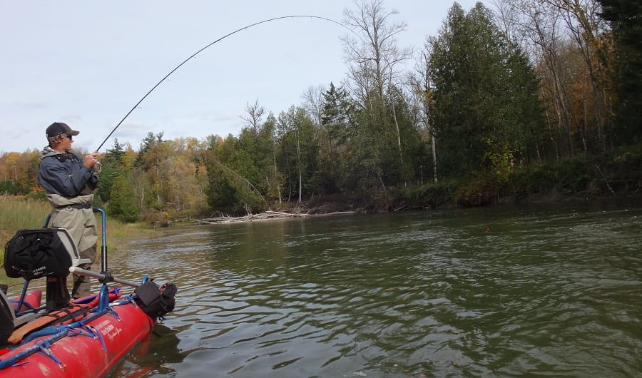 The right Centerinline will help you hook more fish